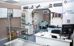 Servicii veterinare Clinica Alvet