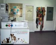 Consultatii veterinare Clinica veterinara Calvaria