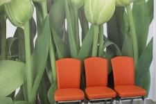 Sala de asteptare Dr. Gusetu Manuela