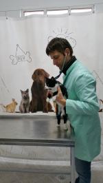 Consultatii catei si pisici Tashi Vet
